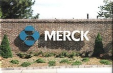 merck-wall-letters